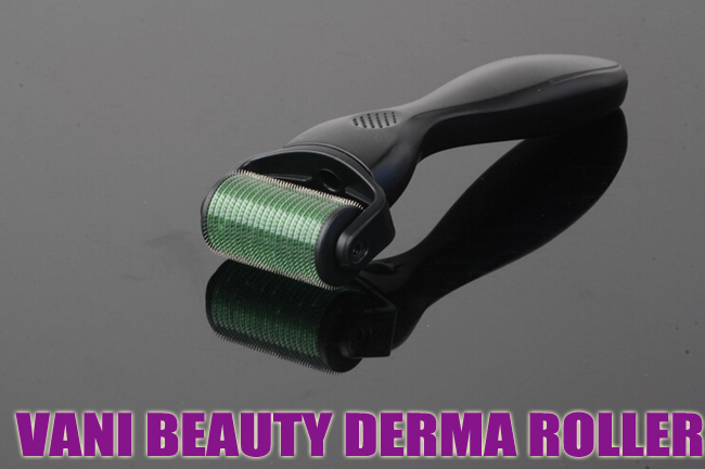 1200 Titanium Alloy Derma Roller Micro Needle Removable Head, DRS1200-15